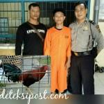 Reskrim Polsek Denbar Tangkap Pencuri Ayam Aduan