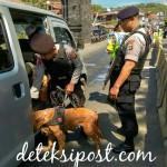 Unit Satwa K9 Dit Sabhara Polda Bali Perketat Pelabuhan Padang Bay
