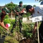 Koramil Bersama Warga Batu Madeg Tanam Pohon Program Go Green