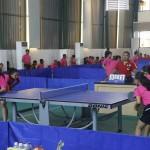 Polda Bali Gelar Kejuaraan Tenis Meja Bersatu Menjaga NKRI