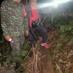 Kodim Buleleng Amankan Puluhan Gelondong Kayu Illegal Logging