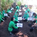Ketua Persit Kodim Tabanan Bersama Anggotanya, Kembangkan Budidaya Sayuran